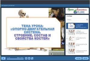 Презентация Строение костей