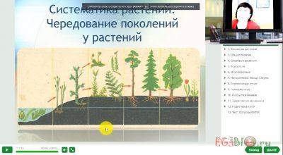 Видео-урок. Чередование поколений у растений. Водоросли