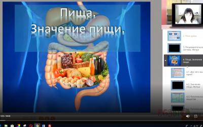 Видеоурок. Пища. Пищеварение в ротовой полости и желудке